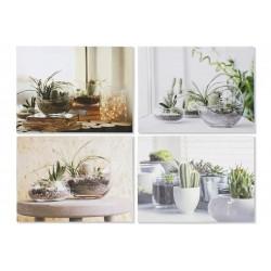 Vászon kép Növények