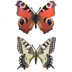 Fali lemez dekoráció pillangó