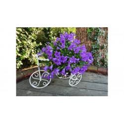 Antik fehér mini virágtartó bicikli