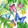 Papírszalvéta 20db-os, 33x33cm, Trópusi pillangók